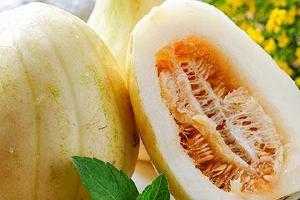 甜瓜和香瓜的区别,目前最好的香瓜品种缩略图