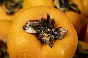 新鲜柿子吃了什么功效,柿子是凉性的吗缩略图