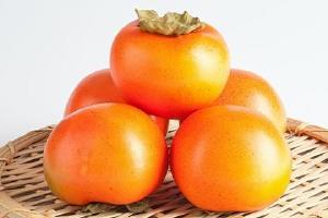 吃完柿子能喝酸奶吗,吃完柿子不能吃什么缩略图