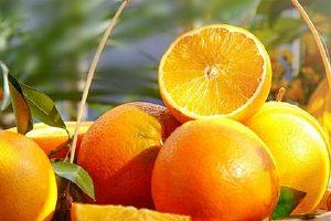 柿子和橙子能一起吃吗 吃柿子要注意什么缩略图