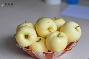 黄苹果吃了有什么好处,吃黄苹果有什么好处缩略图