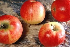 多囊卵巢综合症能吃苹果吗 这样吃苹果才不会影响病症!缩略图