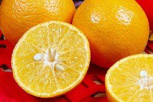 沃柑粑粑柑哪个好吃,沃柑哪里的好吃缩略图