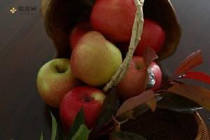 苹果怎么吃最有营养 苹果这样吃功效翻10倍缩略图
