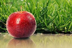 冬天来月经能吃苹果吗,冬天来大姨妈吃苹果好吗缩略图