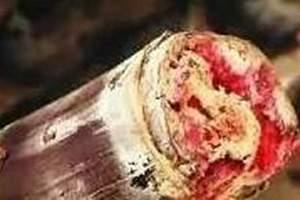 甘蔗变红了能吃吗,甘蔗有一点红丝能吃吗缩略图
