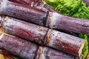 甘蔗是水果吗,吃甘蔗有什么好处缩略图