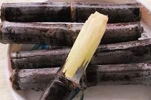 甘蔗冰冻后还可以吃吗,冰冻甘蔗吃了好吗缩略图