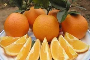 橙子可以放冰箱保存吗 橙子怎么保存好缩略图