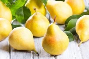 梨子的营养价值及功效 喝梨汁有什么好处缩略图
