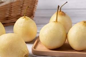 雪花梨和金桔一起熬水的功效,金桔梨子水可以放蜂蜜吗缩略图