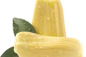 菠萝蜜熟透和烂的区别,菠萝蜜熟透了还能吃吗缩略图