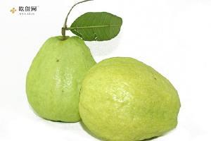 番石榴是酸性还是碱性,番石榴是热性还是凉性,番石榴是什么水果缩略图