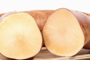 吃雪莲果能吃糖不,雪莲果和什么吃会中毒缩略图