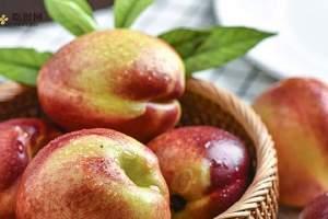 油桃过敏吗,吃油桃过敏有什么症状缩略图