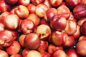 油桃怎么存放时间长,油桃如何长时间保存缩略图