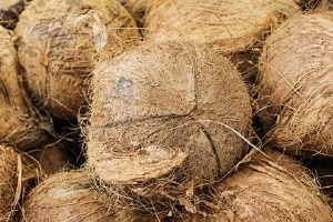 椰子皮怎么去掉,椰子的三个孔怎么找缩略图