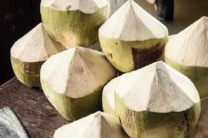 没打开的椰子能放多久 椰子怎么保存缩略图