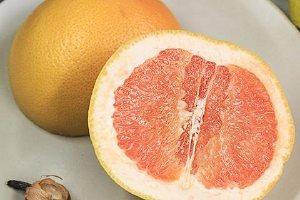西柚可不可以空腹吃,空腹吃西柚能减肥吗缩略图