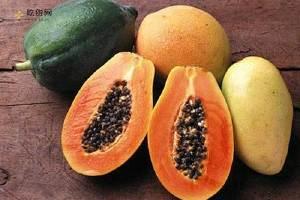 青木瓜孕妇可以吃吗,孕妇可以吃青木瓜吗,孕妇能吃青木瓜吗缩略图