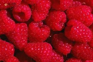 野草莓能吃吗,野草莓可以吃吗,野草莓能不能吃缩略图