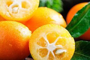 金桔可以和梨一起煮吗,金桔和雪梨同煮有什么功效缩略图