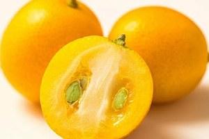 金桔是发物吗,为什么吃金桔会过敏缩略图