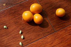 小金桔的功效与作用,小金桔的功效,小金桔的功效与作用及食用方法缩略图