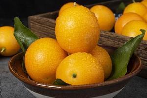 金桔维生素c含量高吗,维生素c多的水果前十名缩略图