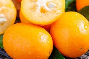 金桔为什么会麻嘴,为什么吃了金桔反而更咳嗽缩略图