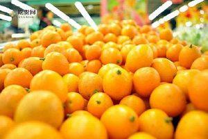 金橘的功效与作用 吃金橘有这些想不到的好处缩略图