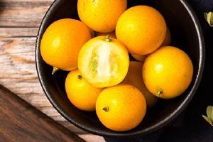 金桔可以减肥吗,金桔热量高吗易长胖吗缩略图