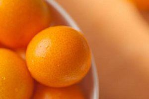 金桔的减肥效果好吗,金桔怎么吃才减肥缩略图