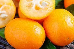 金桔吃了可以减肥吗,金桔怎么吃才减肥缩略图