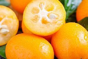 金桔有减肥效果吗,金桔怎么吃能减肥缩略图