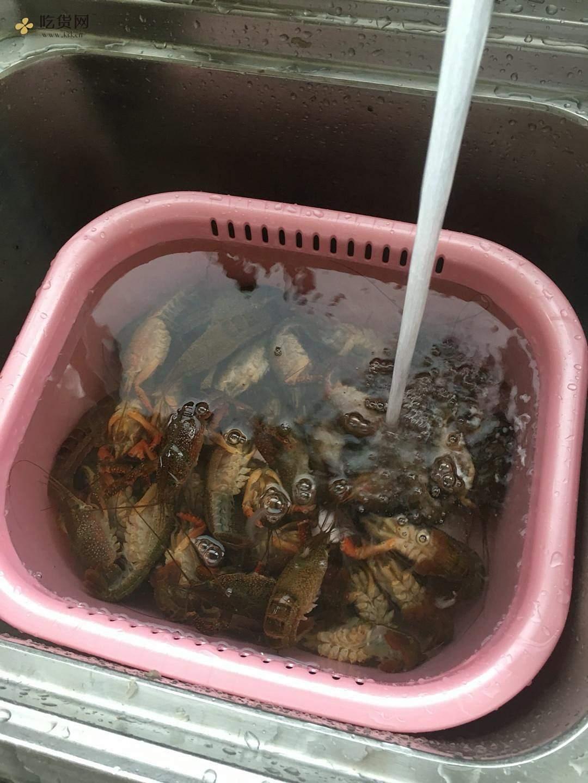 详解如何清理以及辨别小龙虾的做法 步骤11